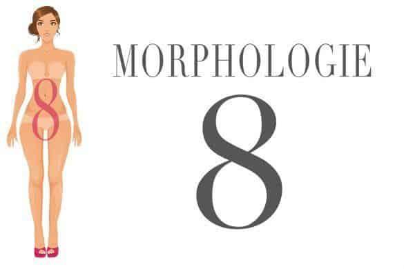 La Morphologie En O Ou Ronde N 39 Existe Pas