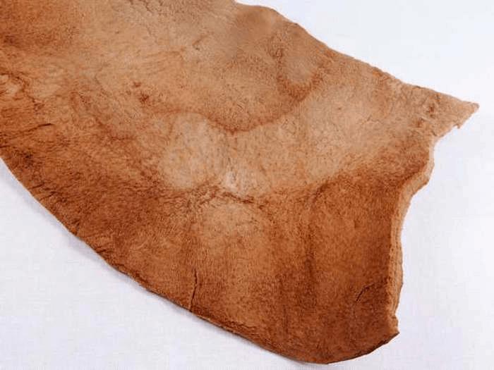 shabiller cuir ethique responsable cuir vegan vegetal champignon